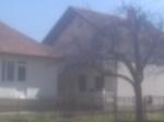ŠUNTIĆ ŠEVKA